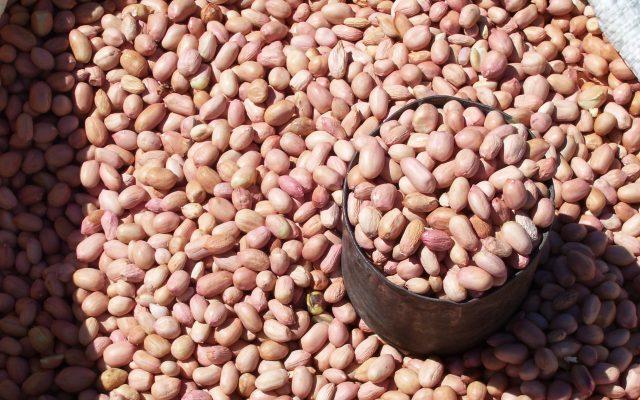 Alimentation disponible à Madagascar @Gret