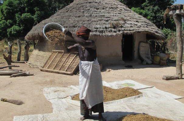 Village in Guinea, ©Gret